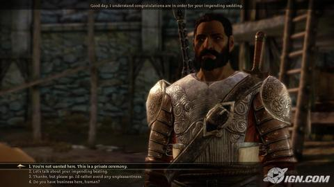 Dragon Age Origins Duncan Conversation
