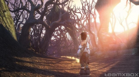 Fable 2 Child Forest