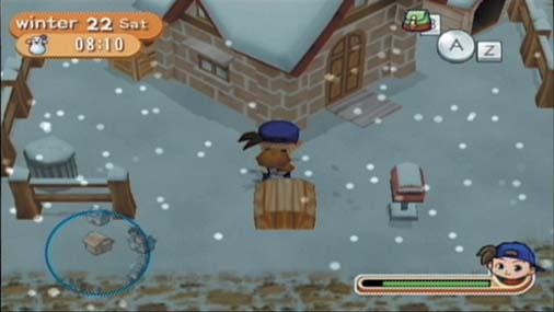 Harvest Moon Magical Melody Farm House Winter
