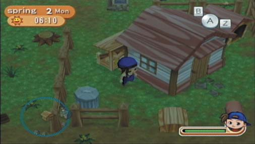 Harvest Moon Magical Melody Farm House