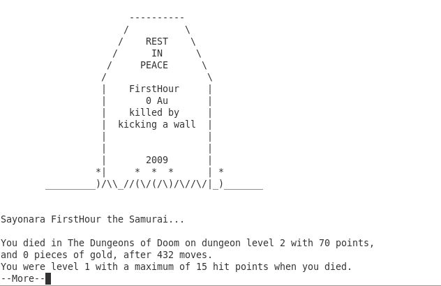 Nethack Killed By Kicking A Wall