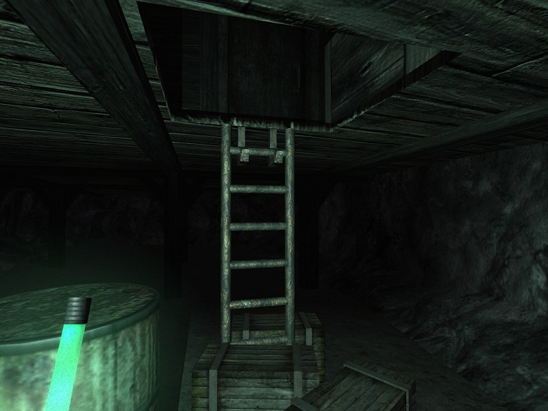 Penumbra 01 Ladder
