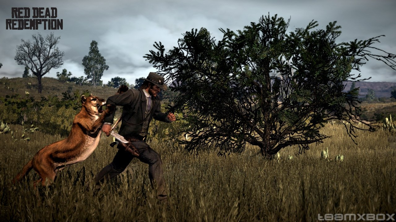 red-dead-redemption-john-marston-cougar.