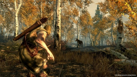 Skyrim Forest Deer Hunting
