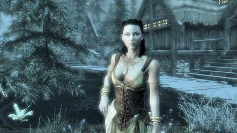 Skyrim Lady of the Night