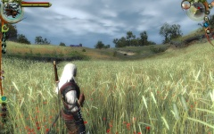 Witcher 09 Fields Scenery